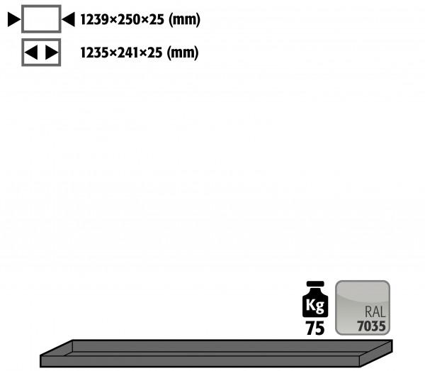 Fachboden Standard für Modell(e): G90 mit Breite 1400 mm, Stahlblech pulverbeschichtet glatt